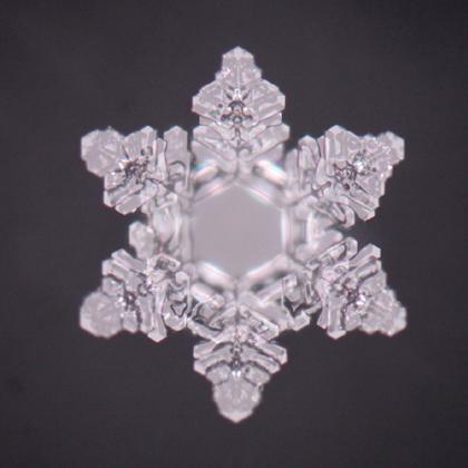 foto-kristall